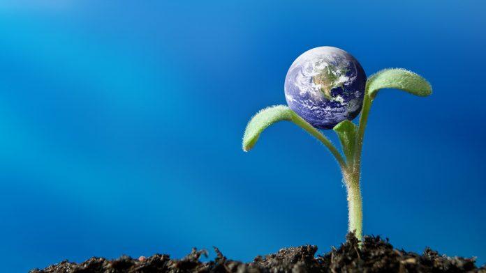 futuro sustentável