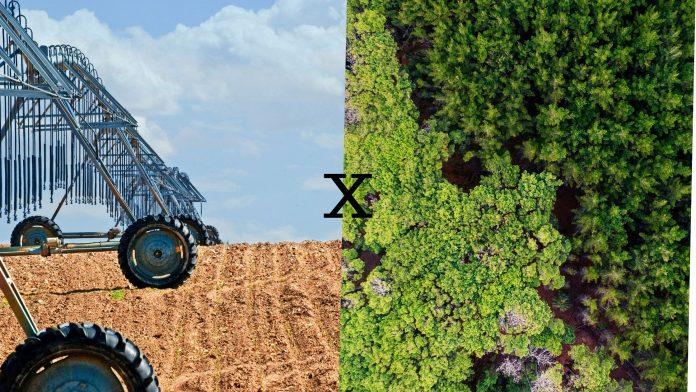 Agronegócio x Agroecologia