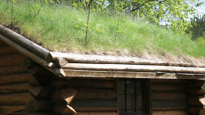 como fazer teto verde
